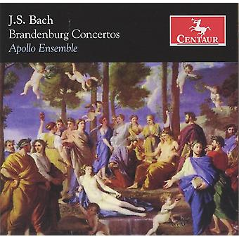 J.S. Bach - J.S. Bach: Brandenburg Concertos [CD] USA import