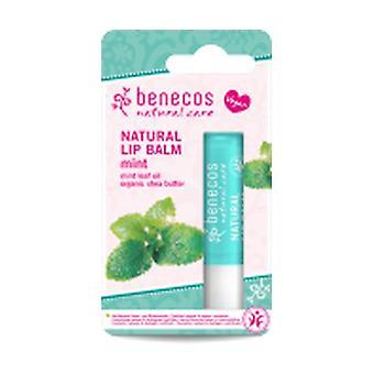 Mint Lip Balm 4,8 g