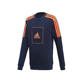 Adidas JR Atletizm Kulübü Crew FL2817 evrensel tüm yıl erkek sweatshirt