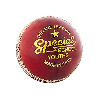 Leser Special School Jugend Kinder Cricket Ball Rot