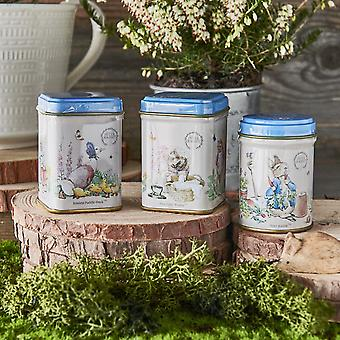 Beatrix potter mini lata de presente, com chá preto de folhas soltas