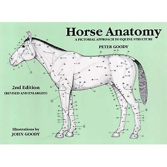 Horse Anatomy 2e by Goody & Peter C.