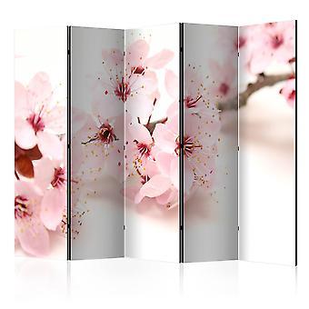 Vouwscherm -  Cherry Blossom II [Room Dividers]