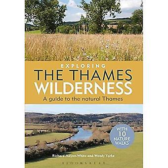 Esplorare il deserto di Thames: una guida per il Tamigi naturale