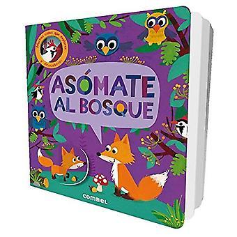 Asomate al Bosque (Little Snappers) [Board book]