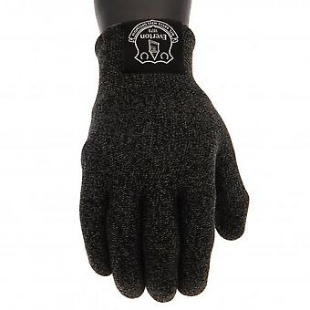 Everton FC Unisex Kids Luxury Touchscreen Gloves