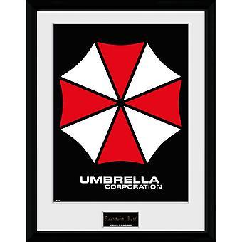 Resident Evil Umbrella Framed Plate 30*40cm
