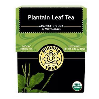 Buddha Teas Plantain Tea, 18 Bags