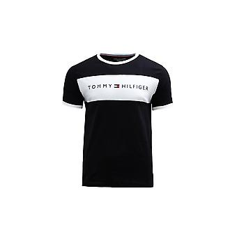 Tommy Hilfiger UM0UM01170BDS universal all year men t-shirt