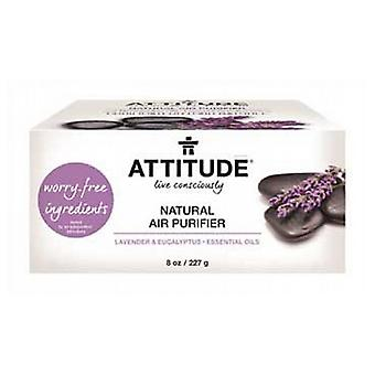 Attitude Bio Absorbant Natural Air Purifier, Lemon 8 Oz
