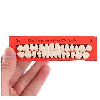 28kpl asettaa universaali Resi väärä hampaiden nasta hampaiden malli