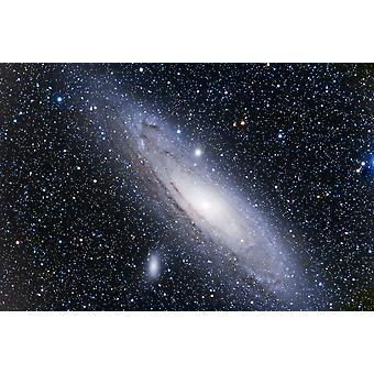 La stampa di Poster Andromeda Galaxy da Alan DyerStocktrek immagini