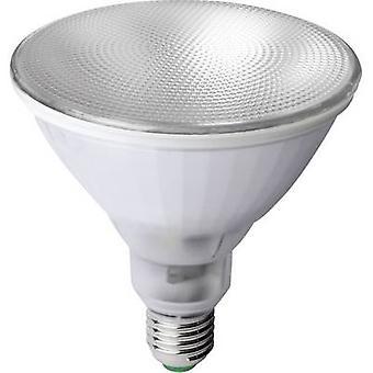 Megaman LED grow light 133 mm 230 V E-27 12 W Reflector bulb 1 pc(s)