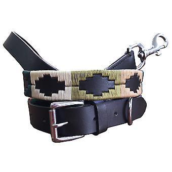 Carlos diaz echte lederen polo hondenhalsband en lood set cdhkplc94