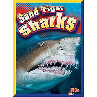 Tiburones tigre de arena