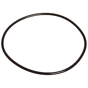 Jandy dyrekretsen R0536600 bakplate O-Ring