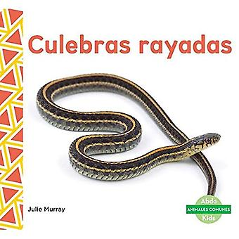 Culebras Rayadas (Garter Snakes) (Animales Comunes (Everyday Animals ))