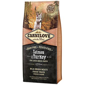 Carnilove Large Breed Puppy Salmon & Turkey (Dogs , Dog Food , Dry Food)