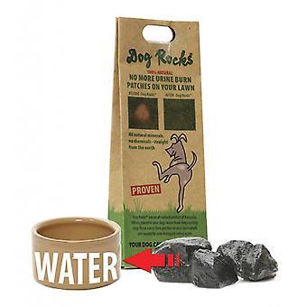 Dog Rocks Urine Burn Prevention Rocks