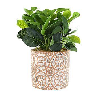 צמח ירוק בסיר מלט עם אריח מרוקאי להדפיס אדום 27cm