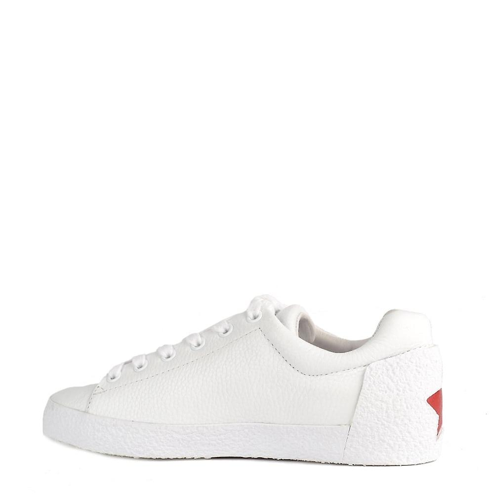 Ash Footwear Nak White Leather Embroided Trainer