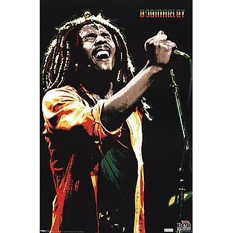 Bob Marley - sång affisch Skriv