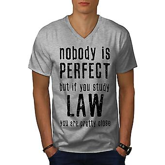 Law Studies Perfect Men GreyV-Neck T-Shirt | Wellcoda