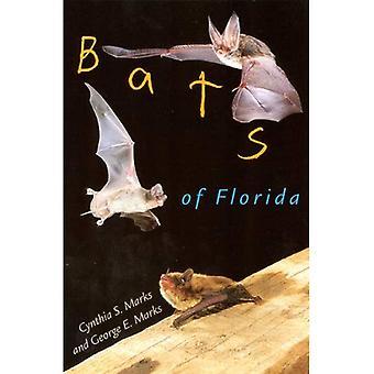 Pipistrelli di Florida