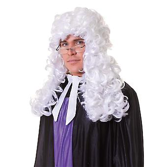Bristol Novelty Unisex Judge Wig