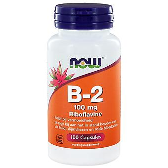 B2 100 mg (100 czapek) - NOW Foods