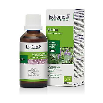 Vers plantenextract Sage 50 ml