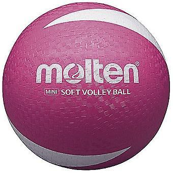 SV2P fondu volley-ball
