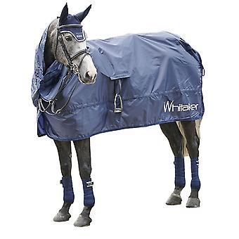 Whitaker Rothwell Roll Up Horse Exercise Sheet