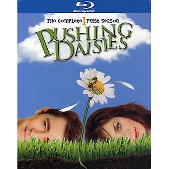 Pushing Daisies - Pushing Daisies: Säsong 1 [BLU-RAY] USA import
