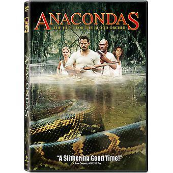 Importación de anacondas-caza de los E.e.u.u. de la orquídea de sangre [DVD]