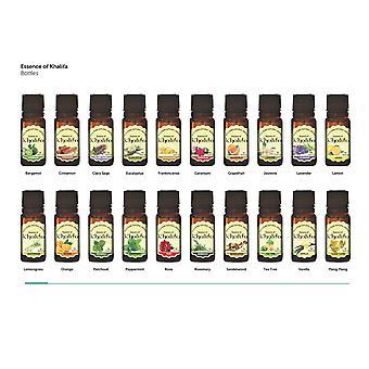 Essensen av Khalifa - 20pc sett av 10ml luksus 100% ren aromaterapi essensielle oljer - terapeutiske karakteren olje - utvalg av de 20 beste med Guide og oppskriftsheftet