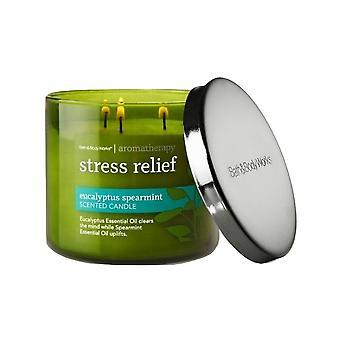 Bath & Body Works Aromatherapie Eucalyptus Spearmint Geurkaars 14,5 oz (Verpakking van 2)
