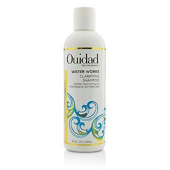 Water works clarifying shampoo (curl essentials) 219775 250ml/8.5oz
