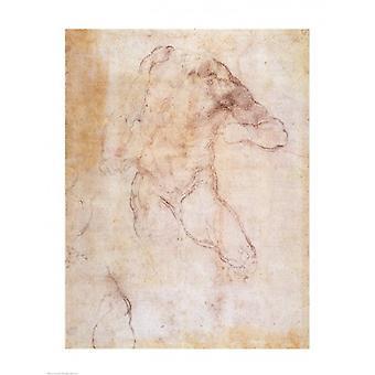 Studie av en manlig naken affisch Skriv av Michelangelo Buonarroti