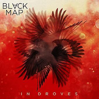 Black Map - In Droves [Vinyl] USA import