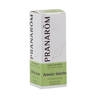 White Mugwort Essential Oil 10 ml of essential oil