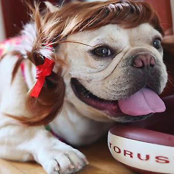 Homemiyn الكلب الباروكات، أزياء الشعر المستعار الحيوانات الأليفة، لوازم الحيوانات الأليفة لعيد جميع القديسين عشية عيد الميلاد مهرجان الحزب الديكور