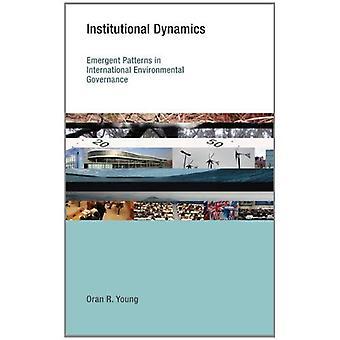 Institutional Dynamics: Emergent Patterns in International Environmental Governance
