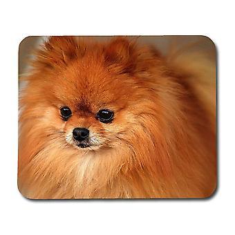 Câine Pomeranian Mouse Pad