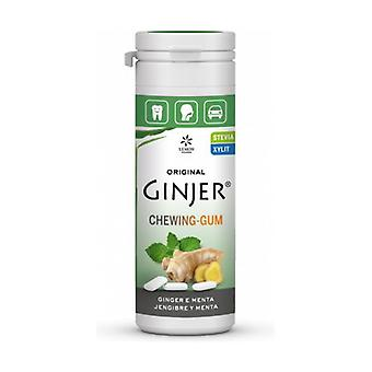 Ginjer chewing gum Mint 30g STEVIA 30 g