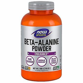 Nyt Elintarvikkeet Beta Alanine Powder, 500 g