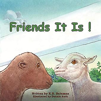 Friends It Is! by K B Bateman - 9781621370130 Book