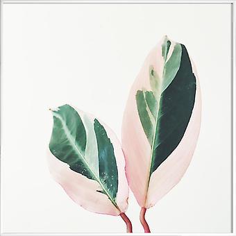 JUNIQE Print -  Pink Leaves - Blätter & Pflanzen Poster in Grau & Grün