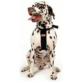 "RAC Standard hund bil sele, 56-89 cm (22-35"") brystet XL størrelse"