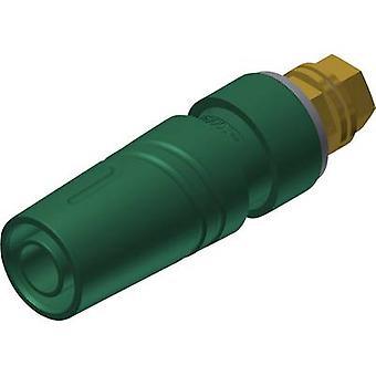SKS Hirschmann KTT 2600 G M4 Au turvallisuus pistorasiaan pistorasia, pystysuora pystysuora sokan halkaisija: 4 mm vihreä 1 PCs()